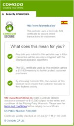 Certificados SSL: Páginas Seguras y de confianza